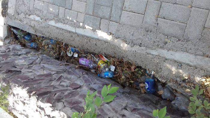 На улице Малдыбаева арык забит мусором (фото)