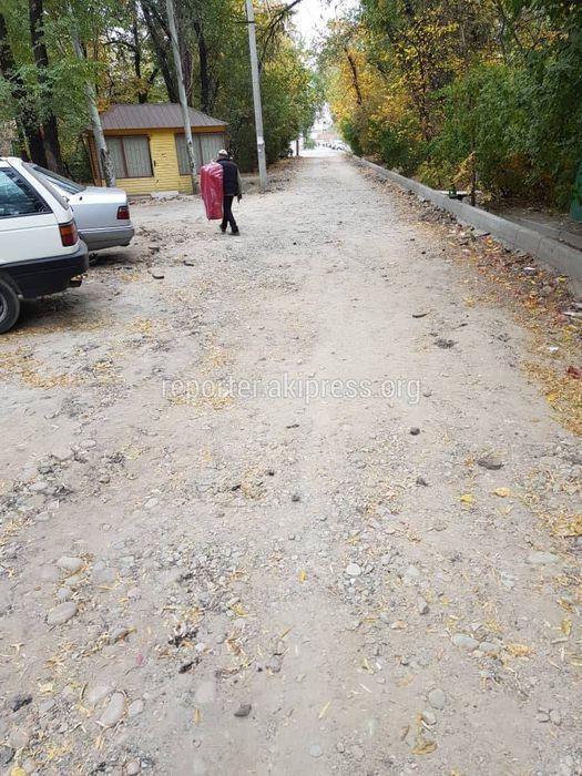 Дорожные работы в переулке Геологического возобновятся после вырубки деревьев, - «Бишкекасфальтсервис»