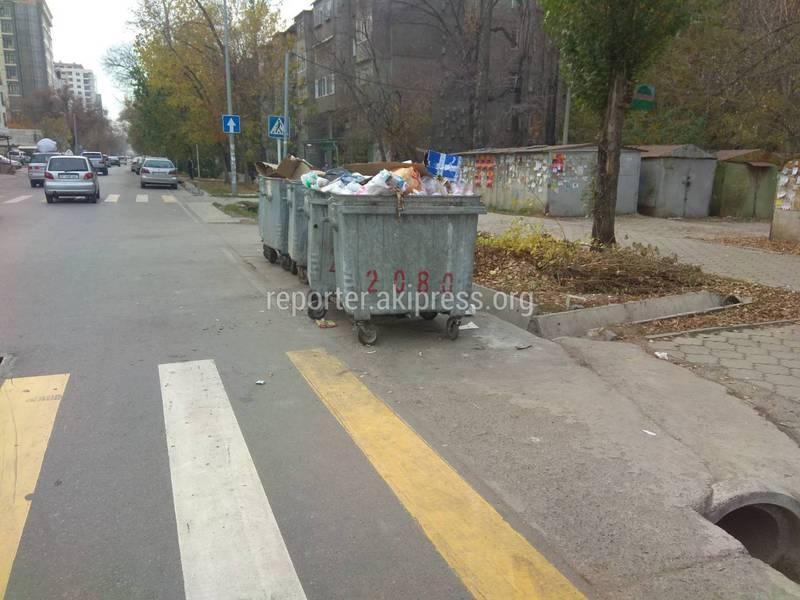 Мусорные баки на Боконбаева-Уметалиева создают опасность для жителей, - горожанин