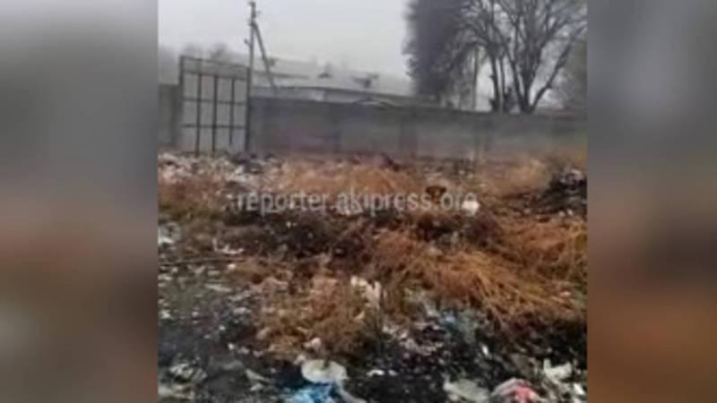 В сузакском мкр Черемушки на протяжении многих лет не вывозится мусор возле образовательных учреждений, - житель (видео)