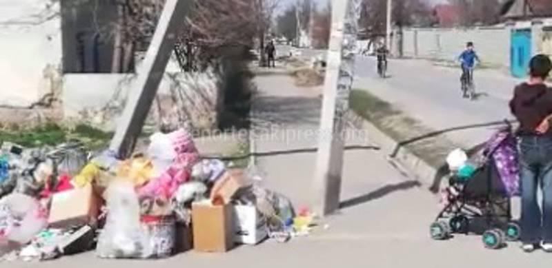 В Бишкеке на Сельсоветская и Орозова больше недели не вывозят мусор (видео)