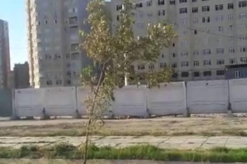 В Джале на ул.Ахунбаева не поливаются посаженные деревья (видео)