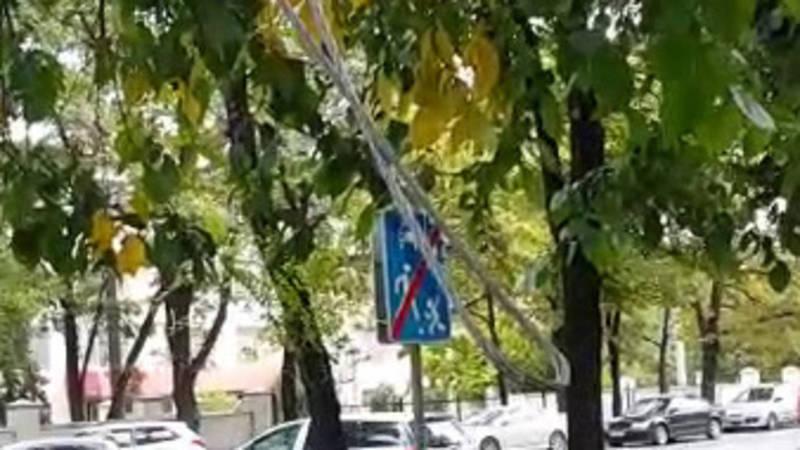 На Байтик Баатыра - Суеркулова над тротуаром на ветках дерева висит оголенный провод (видео)