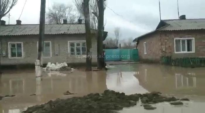 В селе Камышановка затопило дворы и улицы <b><i>(видео)</i></b>