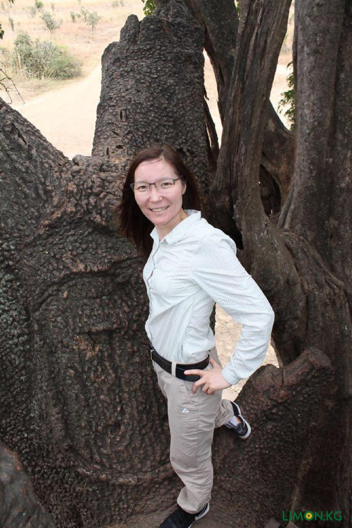 Алия. На Сафари Танзания