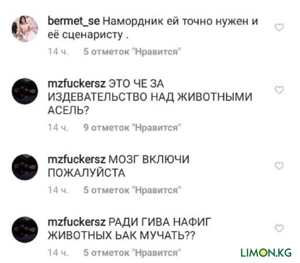 Насилие6