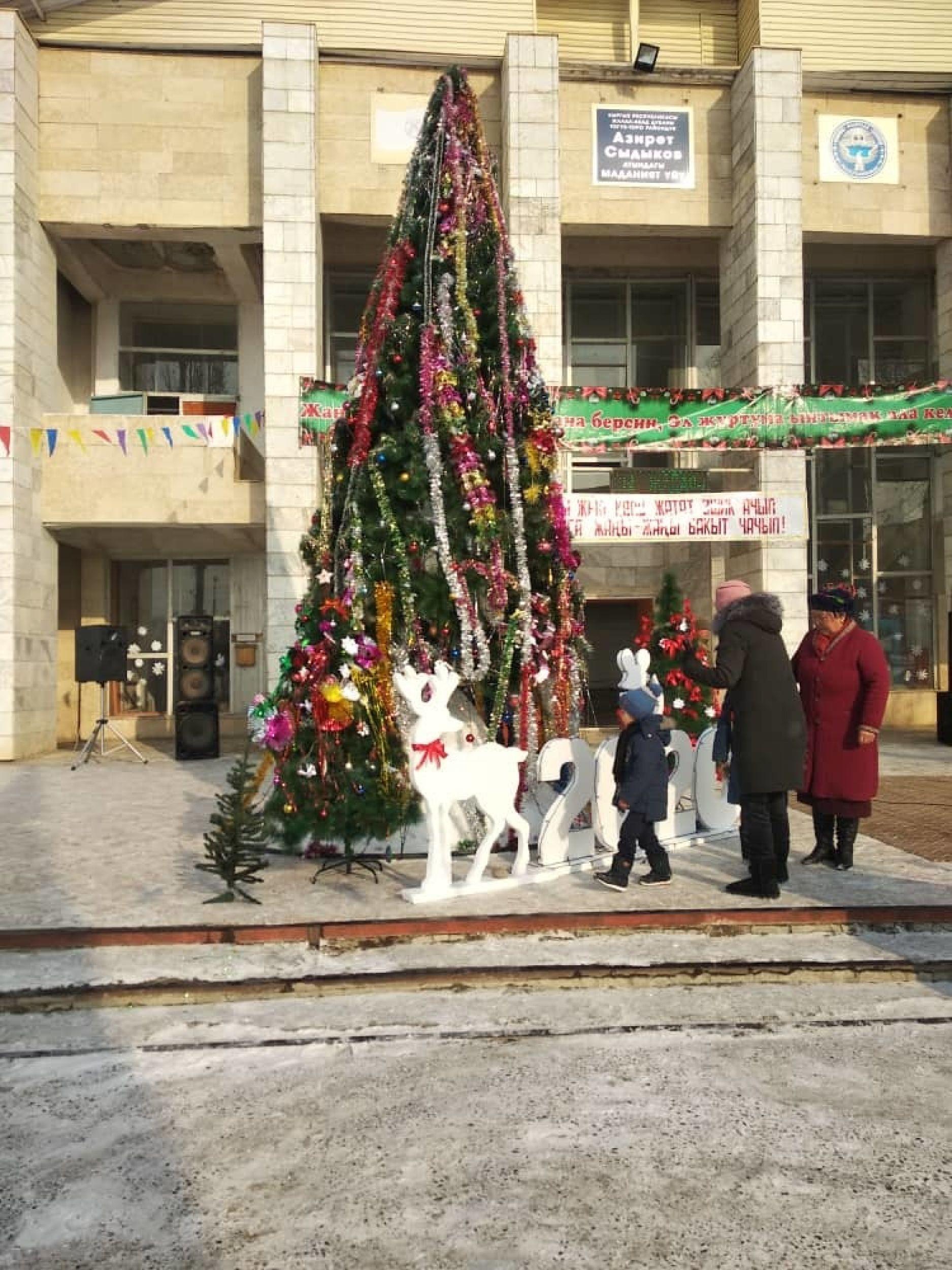 Новогодняя елка в Тогуз-Тороуском районе
