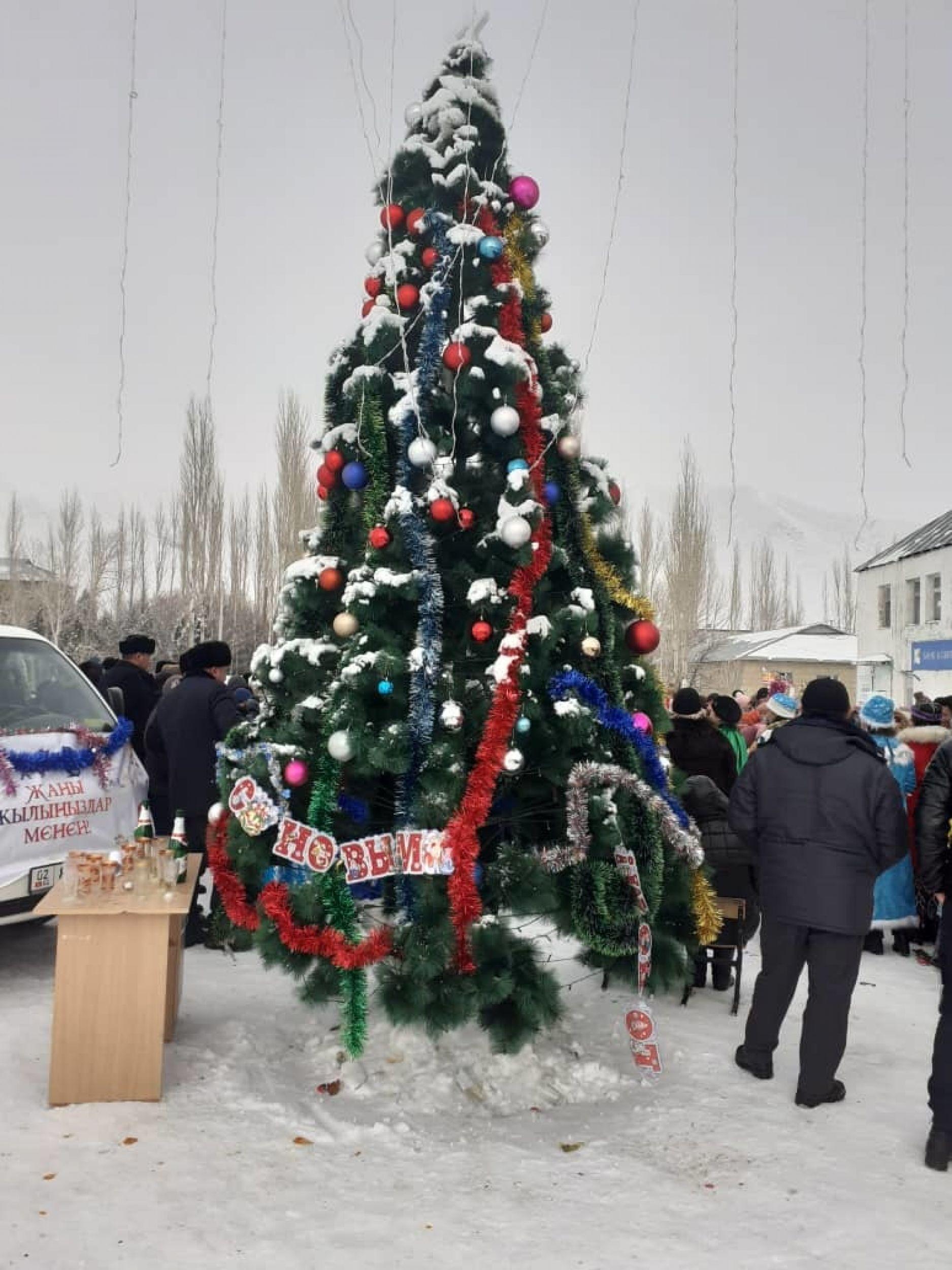 Новогодняя елка в Чаткальском районе