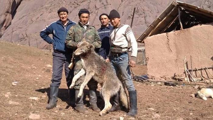 ведь кыргызстан ошская область кара кульджа фото карта первому