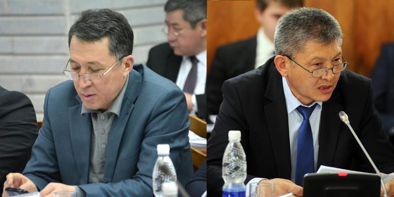 ЕЭК не разрешает транзит утиных грудок, а К.Жумаканов проводит этот товар через Таджикистан и часть остается в КР, - депутат