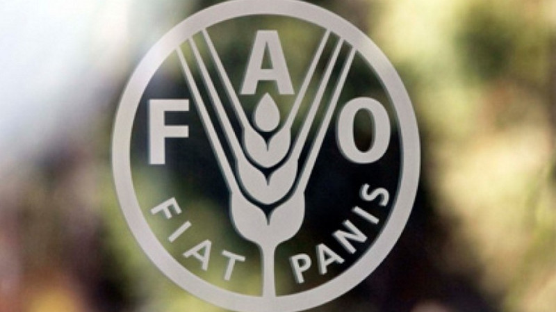 Сокращение объемов пищевых отходов способствует улучшению климата и местных экономик, - ФАО