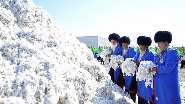 В Туркменистане сообщили о собранном 1 млн тонне хлопка