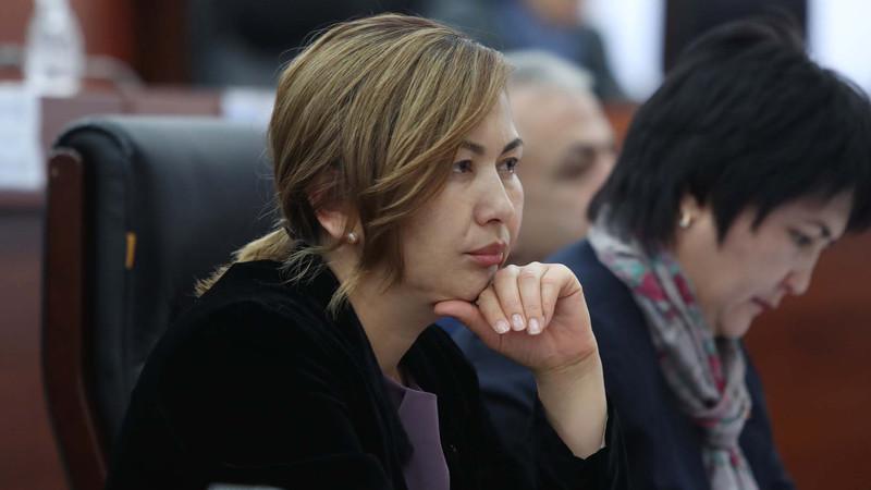 Депутат предложила создать в Кыргызстане ряд особых экономических территорий, в том числе туристически-рекреационную