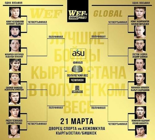 WEF Grand Prix 66 кг