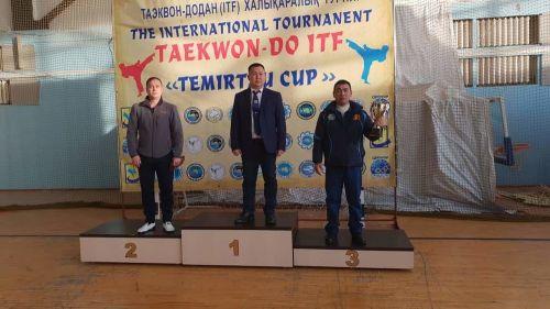 Таэквондо ITF1